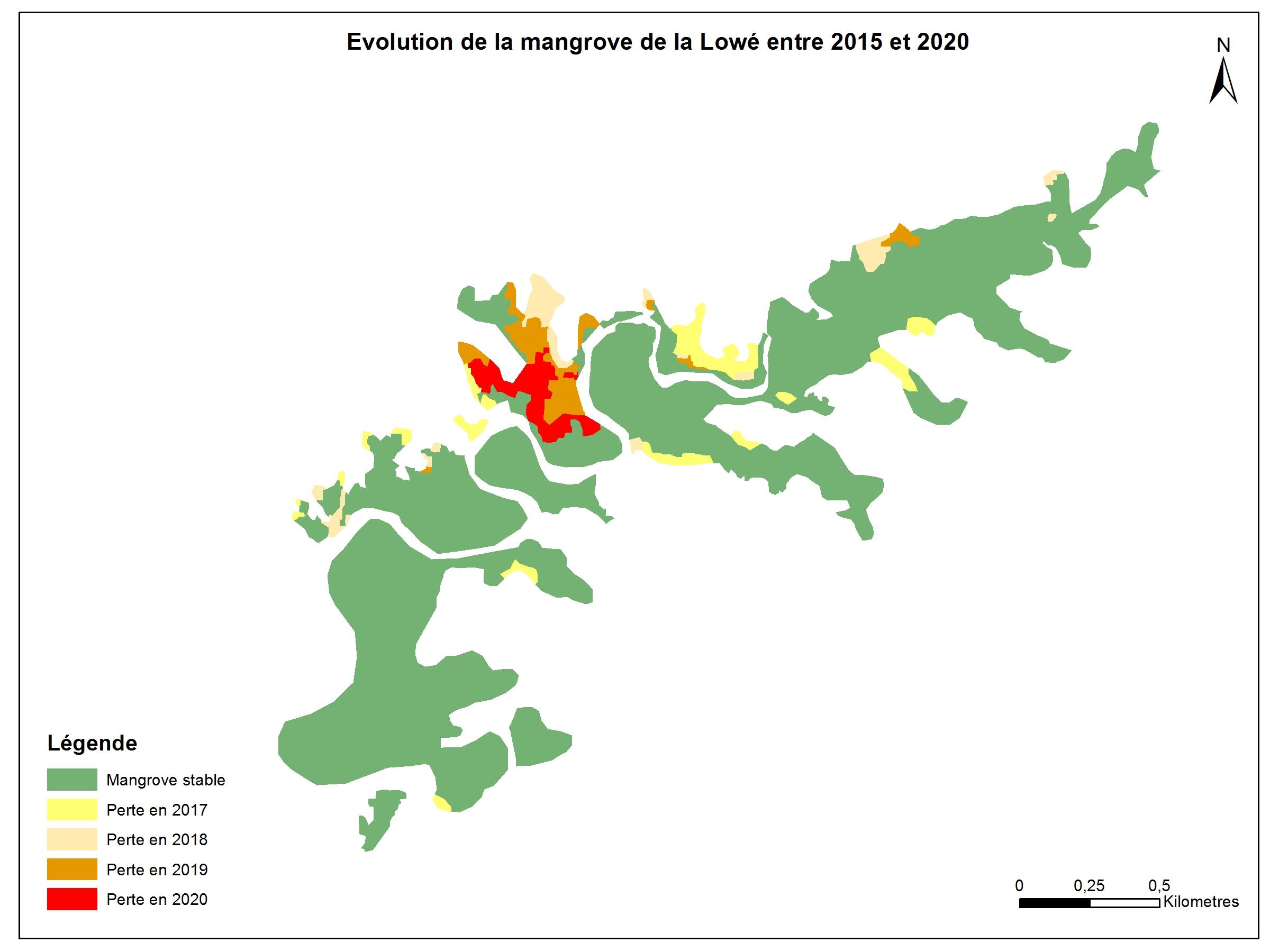 Carto mangrove © AGEOS